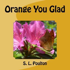 Orange You Glad Children's book