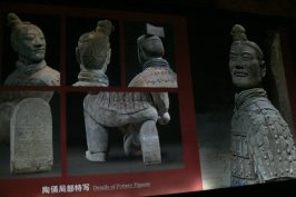 Terracota Warriors 9
