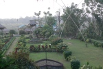 Big garden at KC's in Chitwan