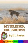 Lion on Safari in My Friend Mr Brown for preschoolers!