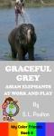 Graceful Grey for SW jpeg