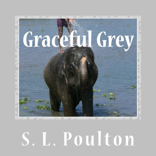 Graceful Grey, Asian Elephants at Work and Play in Chitwan, Nepal