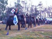 Elephant Races